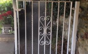 Iron Gate & Handrail